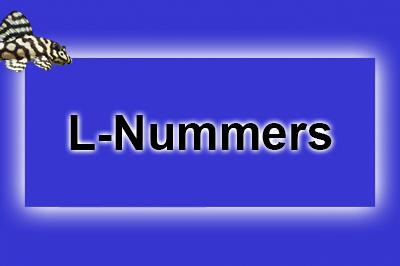 L-nummers